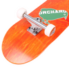 "Orchard Bird Logo Standard Complete 8.1"" Orange  (With Free Skate Tool)"