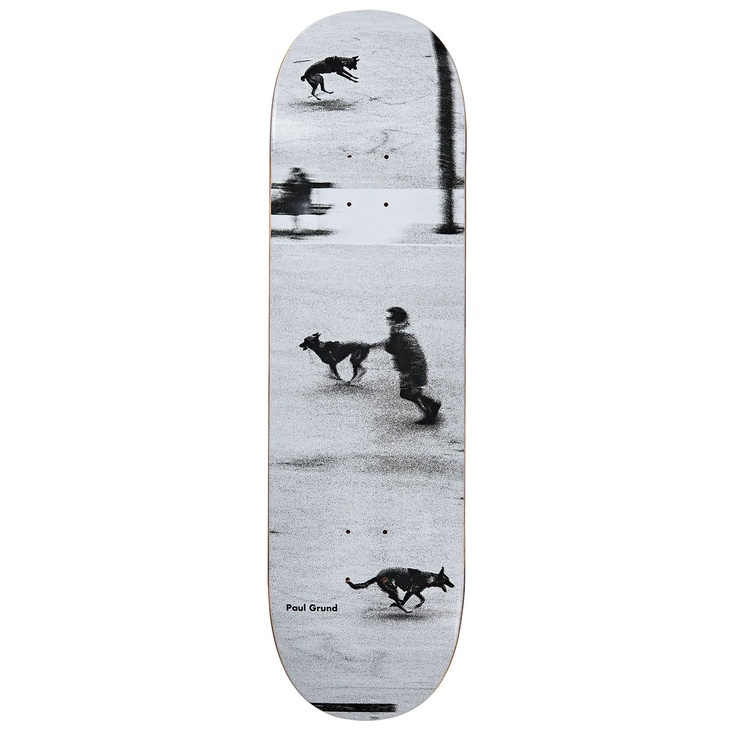 Polar Paul Grund Dog Studies Deck 8.25""