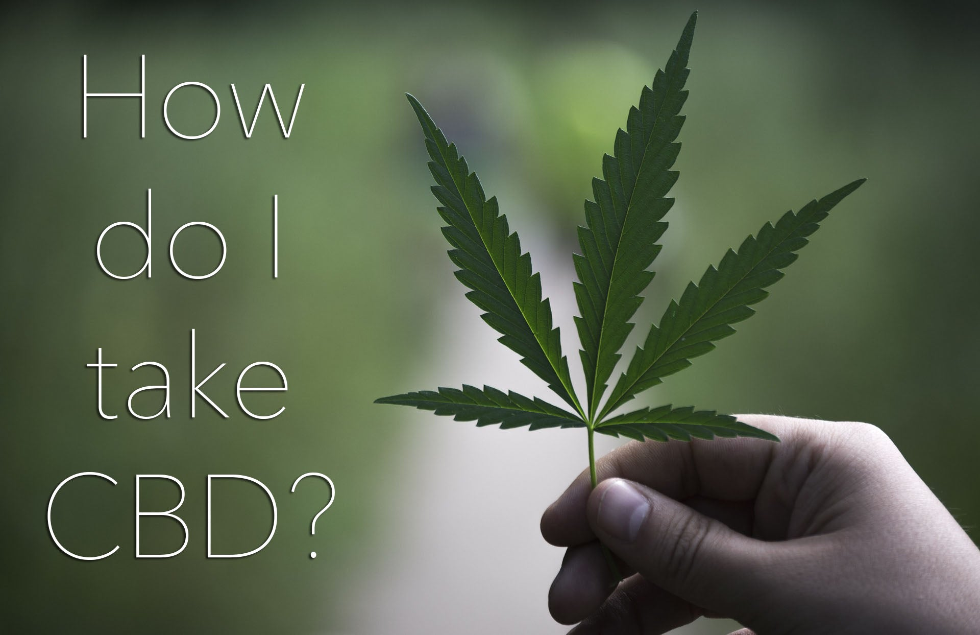 How do I take cbd Oil consumption