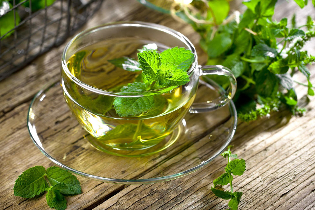 peppermint essential oil benefits: peppermint tea in a glass teacup