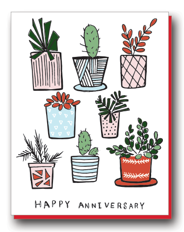 HAPPY ANNIVERSARY SUCCULENTS