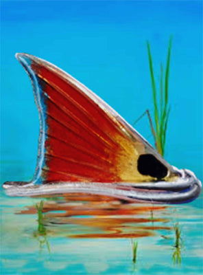 "Redfish Jewel - 6.75"" Top"