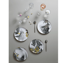 Load image into Gallery viewer, Ibride plates ibride Yuan Parnasse Extra Plates