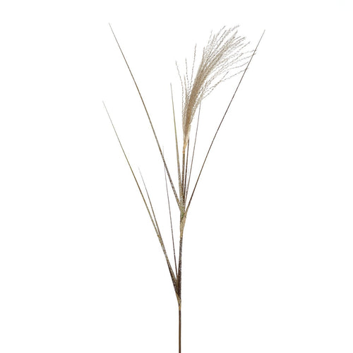 Christmas Single Pampas Grass Reed Decoration-91cm
