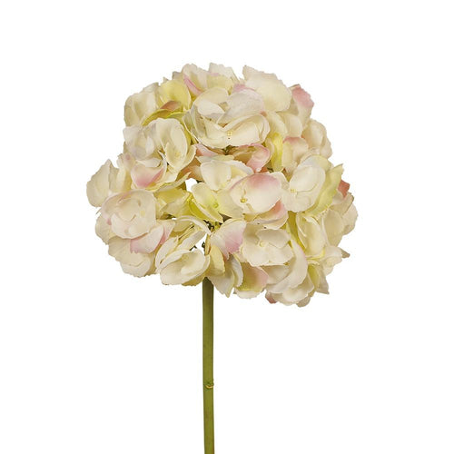 Faux Flower Hydrangea no leaf- Cream and Green