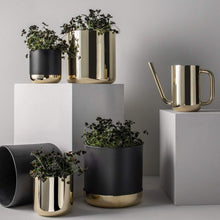 Load image into Gallery viewer, Skultuna Homewares Skultuna Nurture Planter in Brass: Small
