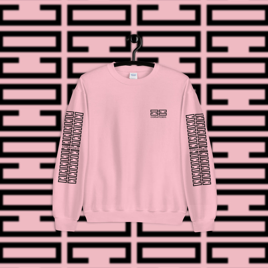 Crewneck Sweaters for Women - coramdeoapparel