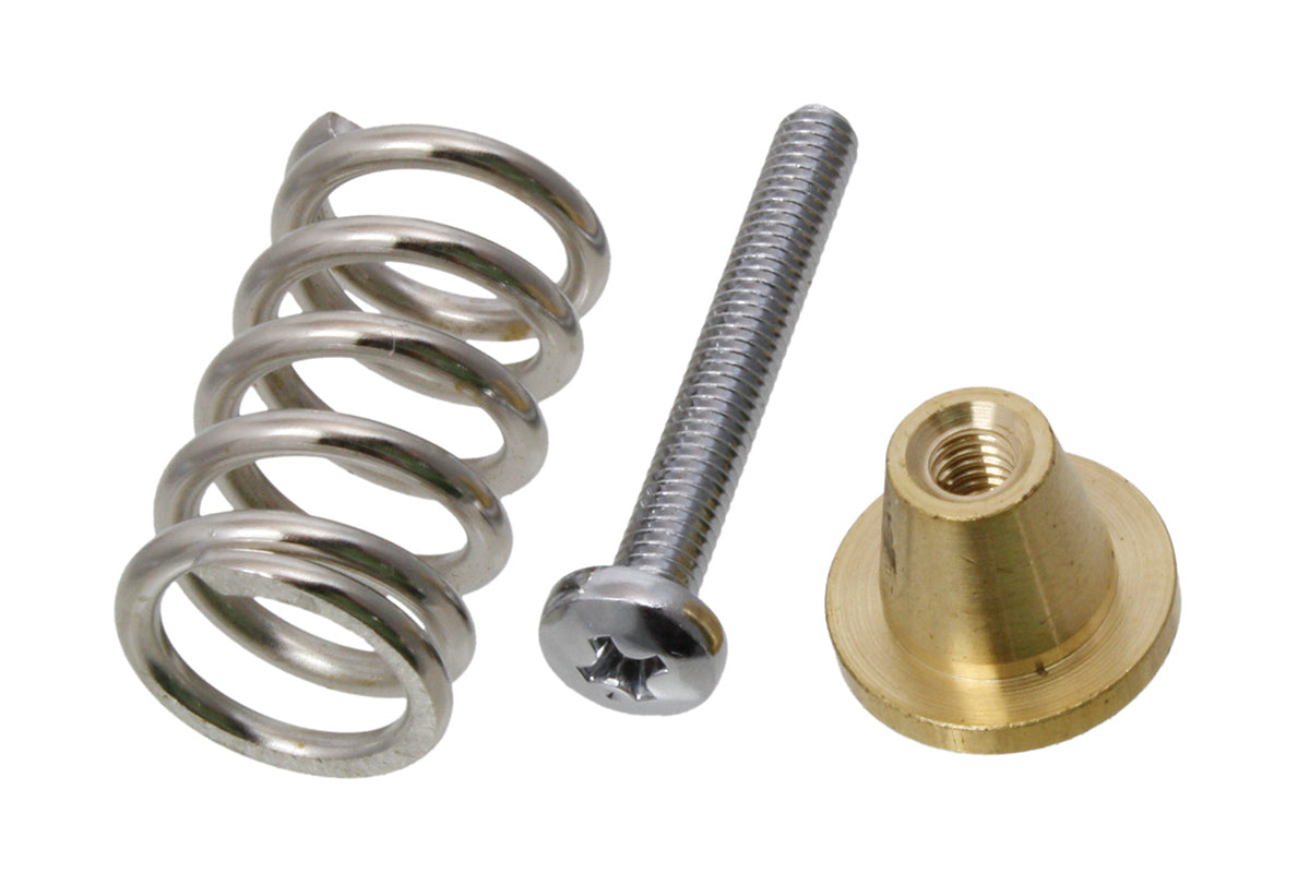 BP-0427 Spring and Screw Set for Jaguar and Jazzmaster
