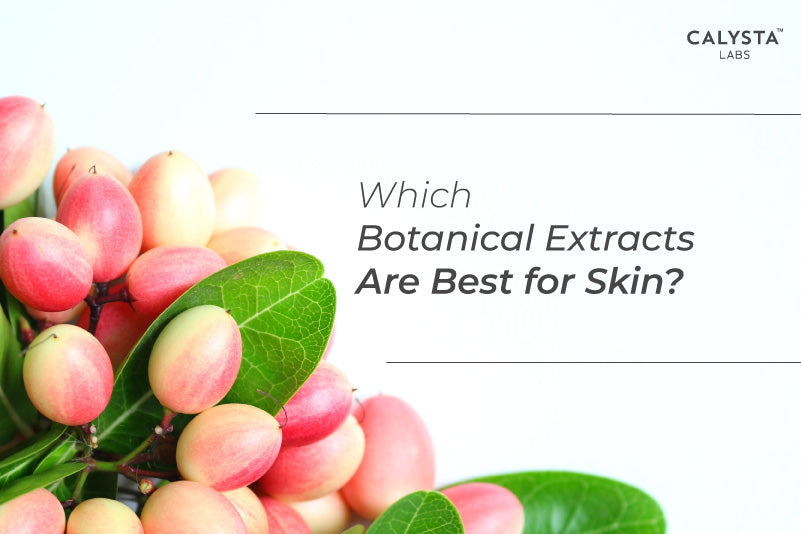 Which Botanical Extracts Are Best for Skin?
