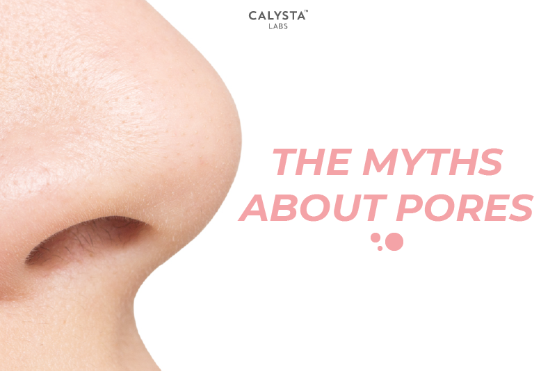 The Myths About Pores