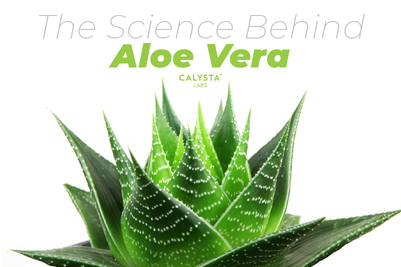 The Science Behind Aloe Vera