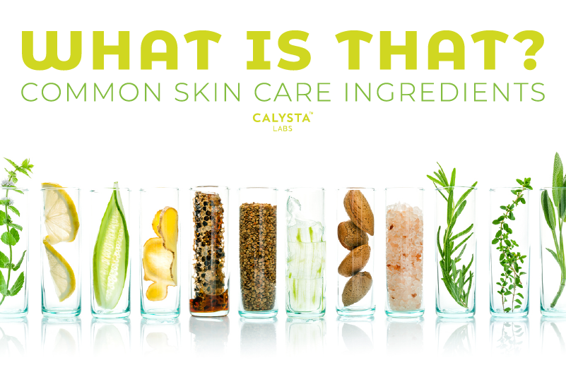 What Is That? Common Skin Care Ingredients