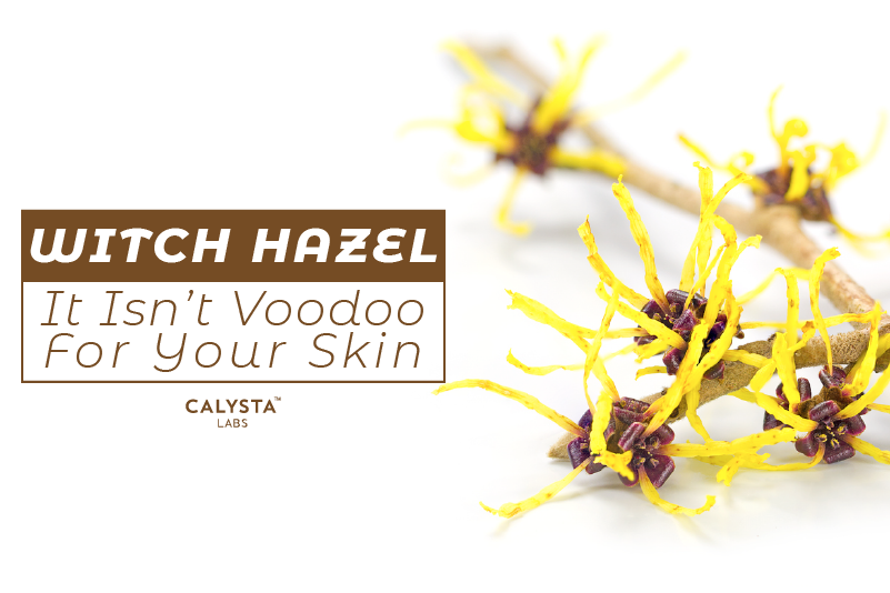 Witch Hazel:  It Isn't Voodoo For Your Skin
