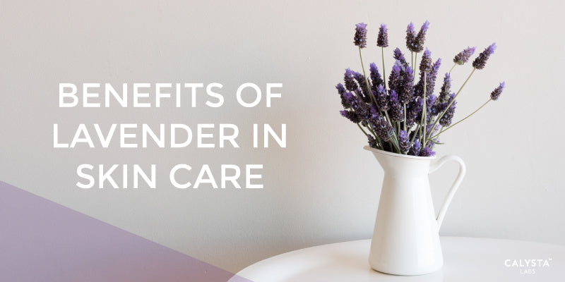 Benefits of Lavender in Skin Care
