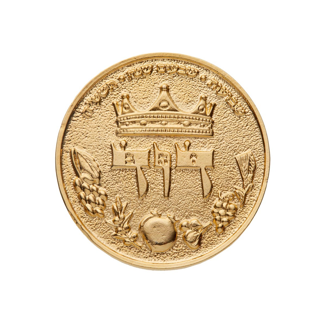 King David Half Shekel Gold Plated Coin