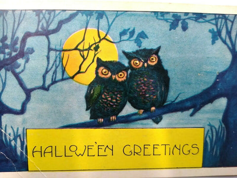 Halloween Postcard Whitney 2 Owls Vintage Original Blue Background Greetings