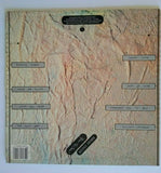 Modern English After The Snow Vinyl LP Record New Wave Post-Punk I Melt With You