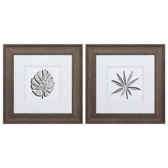 "13"" X 13"" Distressed Wood Toned Frame Cut Paper Palms (Set of 2)"