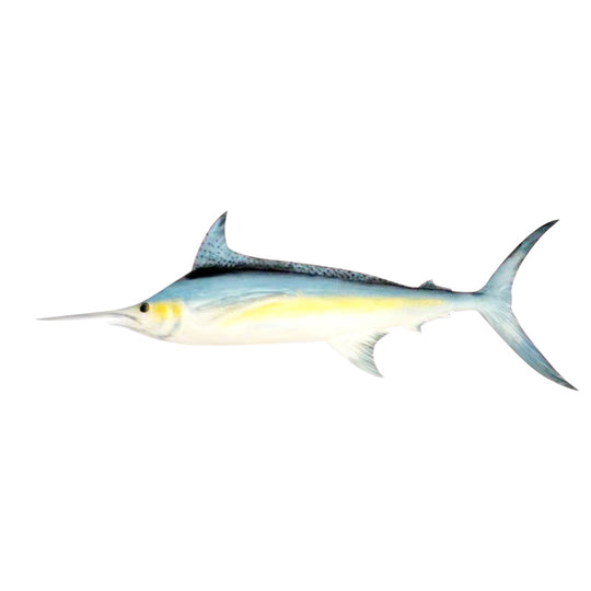 MARLIN WALL HANGING, PAINTED, 20