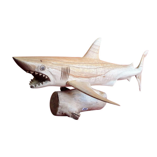 TIGER SHARK ON BASE, NATURAL, 20