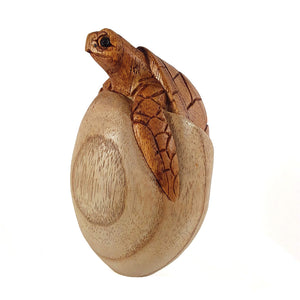 "TURTLE EMERGING FROM EGG, 4"" TALL - Sejati"