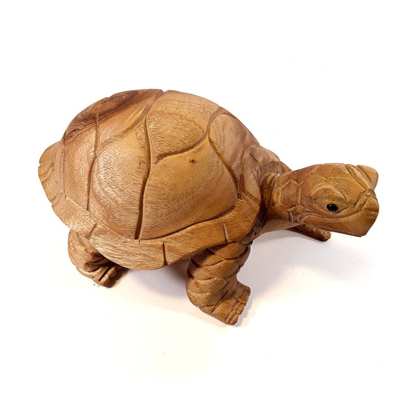 TORTISE, SMALL, 4