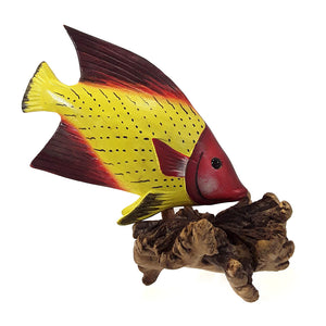 TROPICAL FISH - Sejati