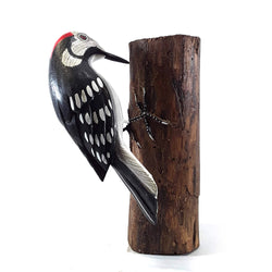 WOODPECKER ON A BRANCH, PAINTED, 7
