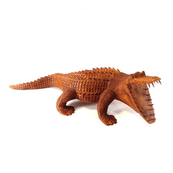 ALLIGATOR, MOUTH OPEN, NATURAL, SUAR WOOD, 20