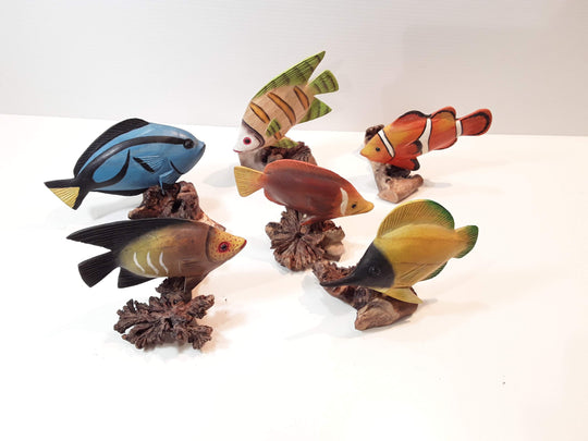 TROPICAL FISH, SET OF SIX (SPECIES VARY)