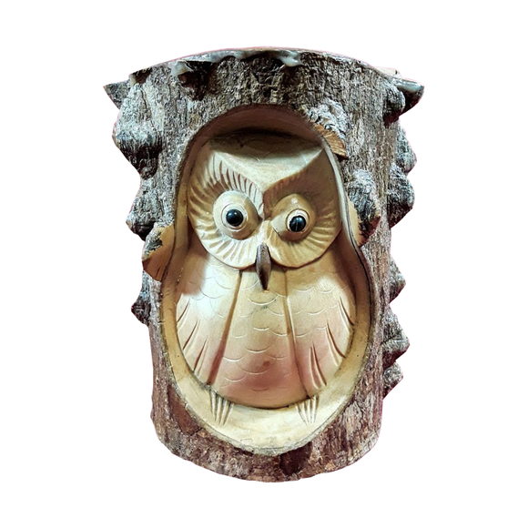 OWL CARVED INTO TREE TRUNK, CROCODILE WOOD, 6