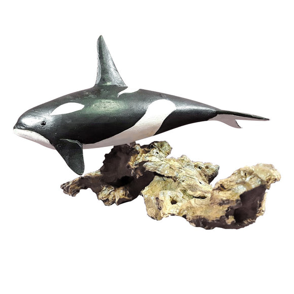 ORCA WHALE ON WOOD BURL, PAINTED,12