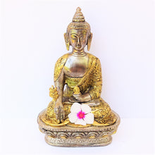 Load image into Gallery viewer, Two Tone Medicinal Buddha - Medium