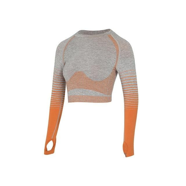 Seamless Rib Dry Fit Tight Long Sleeve Crop top+Leggings Workout Gym Yoga Set - klozetstyle.com