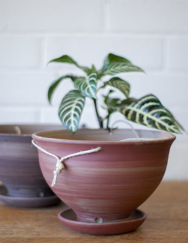 Hanging Planter with Catch Basin