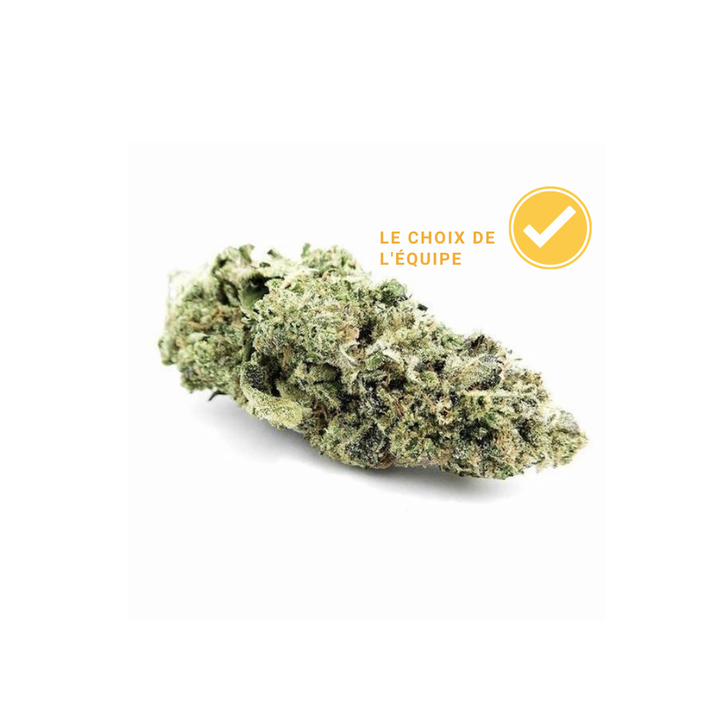 cannabis cbd legal suisse