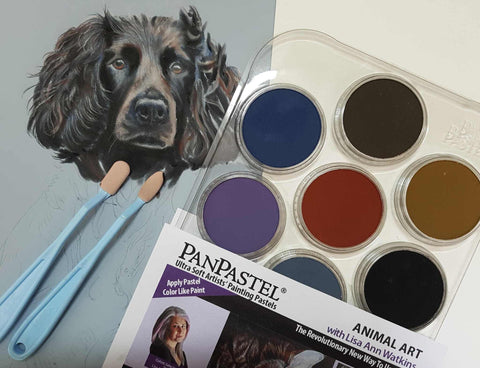 PanPastel Set : Animal Art with Lisa Ann Watkins Pan Pastel