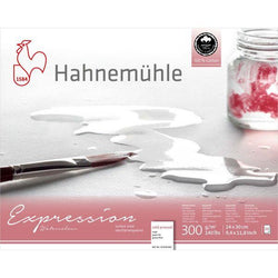 Hahnemühle Expression 100% Cotton Watercolour Blocks - Cold Pressed - 20 Sheets 24 x 30 cm 300gsm