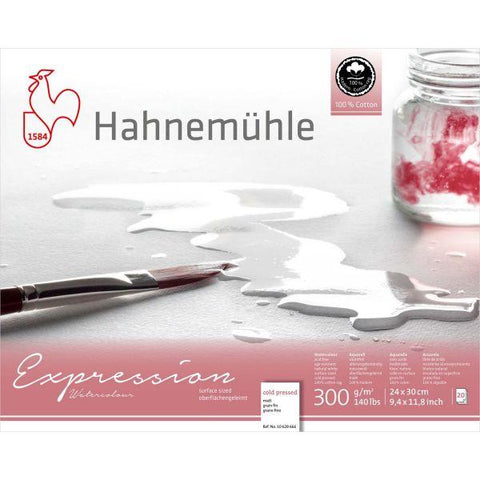 Hahnemühle Expression 100% Cotton Watercolour Blocks - Cold Pressed - 20 Sheets - 300gsm : 24 x 30 cm