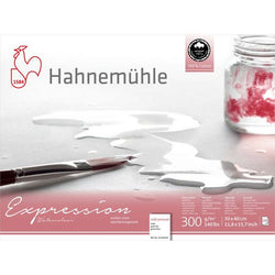 Hahnemühle Expression 100% Cotton Watercolour Block Cold Pressed 20 Sheets 30 x 40 cms 300gsm
