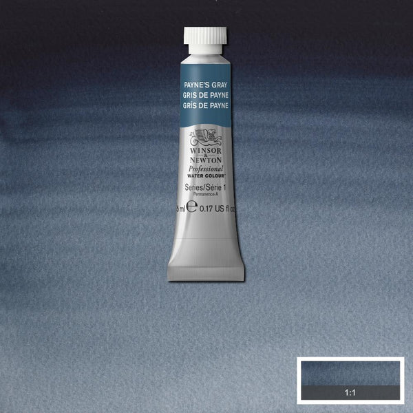 Winsor & Newton Professional Watercolour Paint 5ml : Payne's Gray