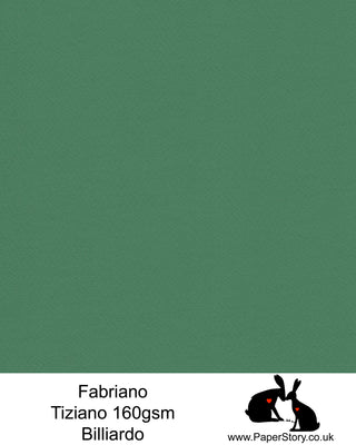 High quality paper from Italy, Billiardo forest green Fabriano Tiziano is 160 gsm, Tiziano has a high cotton content, a textured naturally sized surface. This paper is acid free to guarantee long permanence in time, pH neutral. It has highly lightfast colours, an excellent surface making and sizing which make this paper particularly suitable for papercutting, pastels, pencil, graphite, charcoal, tempera, air brush and watercolour techniques. Tiziano can be used for all printing techniques.