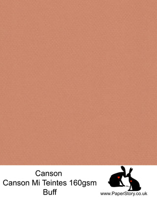Canson Mi Teintes acid free, Buff, deep warm orange brown, hammered texture honeycomb surface paper 160 gsm. This is a popular and classic paper for all artists especially well respected for Pastel  and Papercutting made famous by Paper Panda. This paper has a honeycombed finish one side and fine grain the other. An authentic art paper, acid free with a  very high 50% cotton content. Canson Mi-Teintes complies with the ISO 9706 standard on permanence, a guarantee of excellent conservation