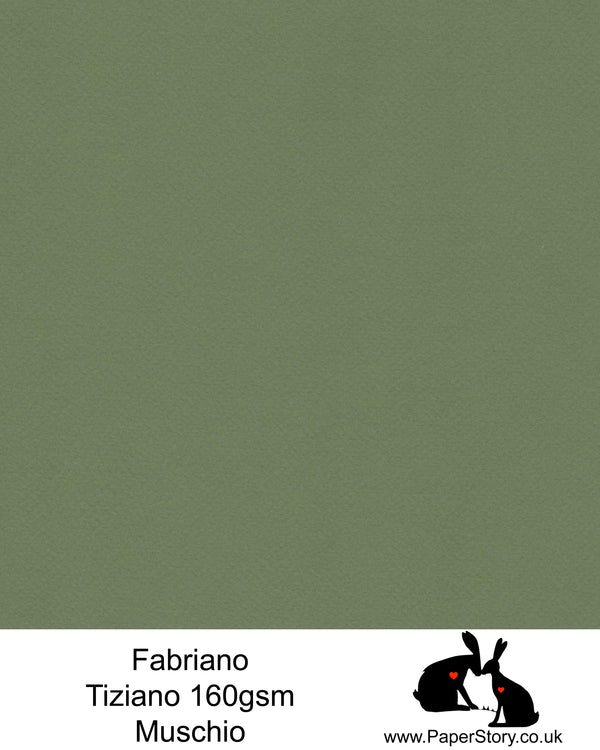 High quality paper from Italy, Muschio Moss Green. Fabriano Tiziano is 160 gsm, Tiziano has a high cotton content, a textured naturally sized surface. This paper is acid free to guarantee long permanence in time, pH neutral. It has highly lightfast colours, an excellent surface making and sizing which make this paper particularly suitable for papercutting, pastels, pencil, graphite, charcoal, tempera, air brush and watercolour techniques. Tiziano can be used for all printing techniques.