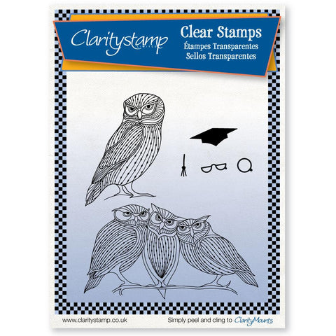 CLARITYSTAMP WISE OWLS + MASK  UNMOUNTED CLEAR STAMP SET