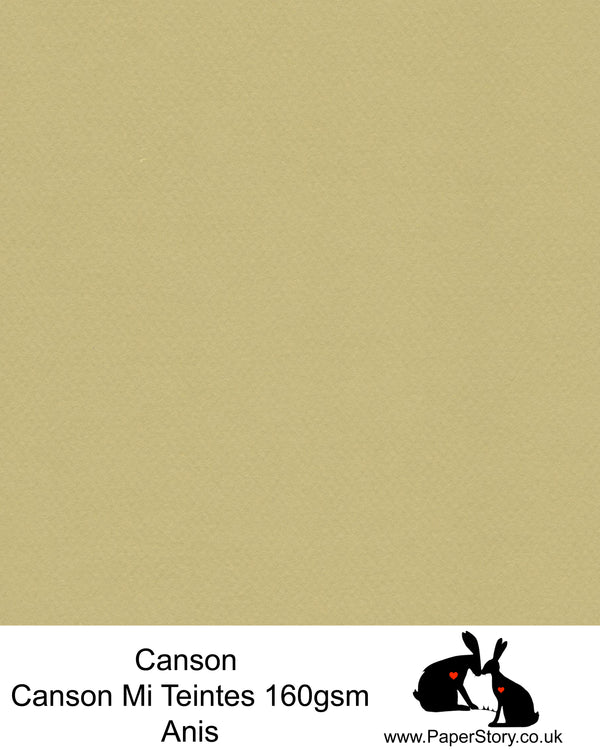 Canson Mi Teintes acid free, Anis pastel green, hammered texture honeycomb surface paper 160 gsm. This is a popular and classic paper for all artists especially well respected for Pastel  and Papercutting made famous by Paper Panda. This paper has a honeycombed finish one side and fine grain the other. An authentic art paper, acid free with a  very high 50% cotton content. Canson Mi-Teintes complies with the ISO 9706 standard on permanence, a guarantee of excellent conservation