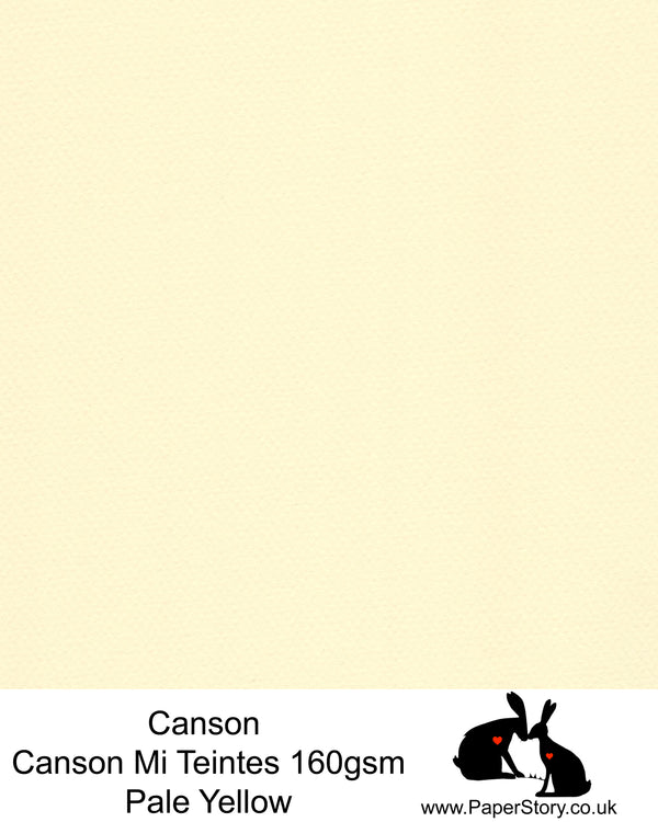 Canson Mi Teintes acid free, hammered texture honeycomb surface paper 160 gsm. This is a popular and classic paper for all artists especially well respected for Pastel  and Papercutting made famous by Paper Panda. This paper has a honeycombed finish one side and fine grain the other. An authentic art paper, acid free with a  very high 50% cotton content. Canson Mi-Teintes complies with the ISO 9706 standard on permanence, a guarantee of excellent conservation