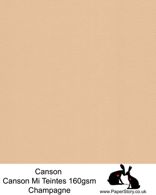 Canson Mi Teintes acid free, Champagne, ivory beige hammered texture honeycomb surface paper 160 gsm. This is a popular and classic paper for all artists especially well respected for Pastel  and Papercutting made famous by Paper Panda. This paper has a honeycombed finish one side and fine grain the other. An authentic art paper, acid free with a  very high 50% cotton content. Canson Mi-Teintes complies with the ISO 9706 standard on permanence, a guarantee of excellent conservation