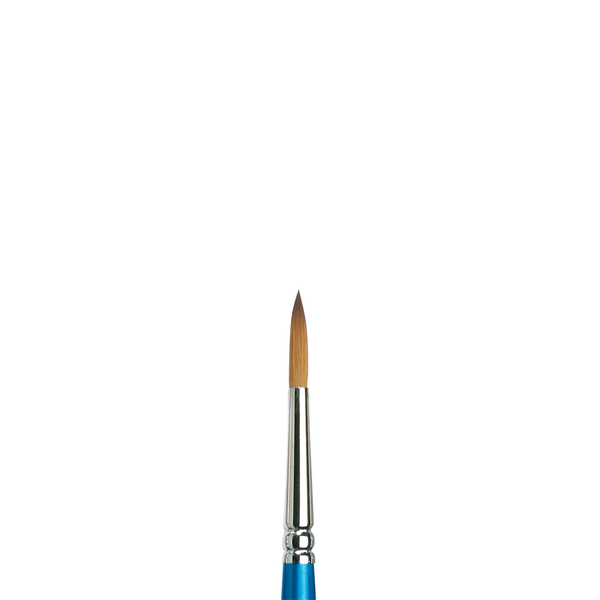 Winsor and Newton : Cotman Watercolour Brush : Set of 4