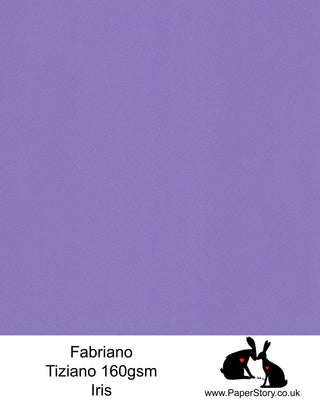 High quality paper from Italy, Iris refreshing purple Fabriano Tiziano is 160 gsm, Tiziano has a high cotton content, a textured naturally sized surface. This paper is acid free to guarantee long permanence in time, pH neutral. It has highly lightfast colours, an excellent surface making and sizing which make this paper particularly suitable for papercutting, pastels, pencil, graphite, charcoal, tempera, air brush and watercolour techniques. Tiziano can be used for all printing techniques.